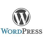 Wordpress En İyi İçerik Yönetim Sistemi